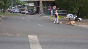 pedestres 4