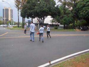 pedestres 7